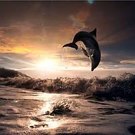 Фотопанно Дельфины. Печать на кафеле, плитка 20х30 см.