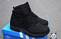 Зимние мужские кроссовки Adidas Outdoor Winter Hiker II кожа мех