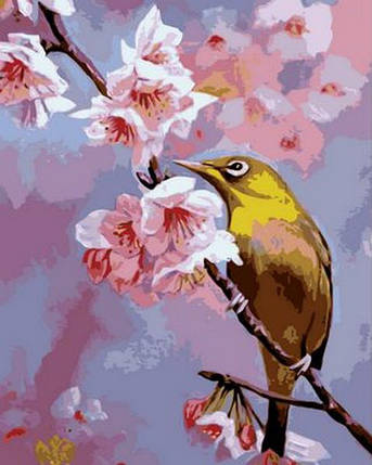 "Раскраска по номерам ""Колибри на яблоневой ветке""  худ. Вавейкина  Светлана, фото 2"