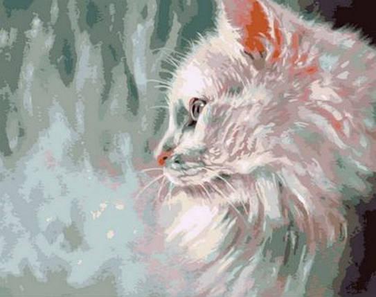 Набор-раскраска по номерам Белый кот худ. Пол Найт, фото 2