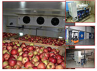 Холодильная камера для фруктов