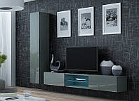 VIGO XXI Гостиная серый/серый глянец CAMA