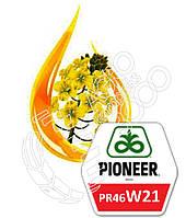 Семена рапса Pioneer PR46W21 (среднеспелый, озимый)