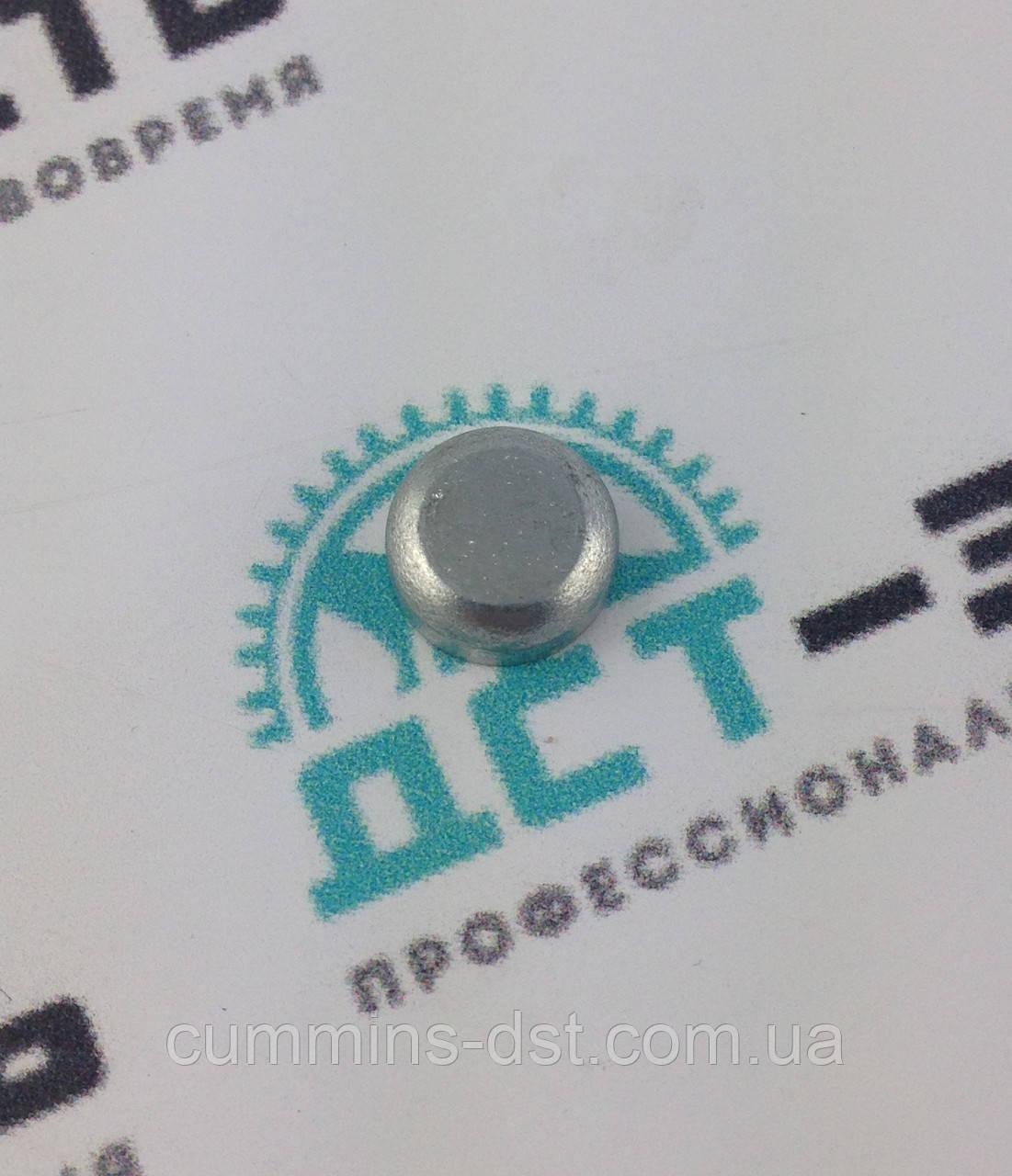 Заглушка для Cummins ISF2.8/4BT/6BT/QSB d=10мм 3900955/3905368