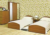 Атлант Юг набор мебели для гостиницы (БМФ) венге тёмный/светлый