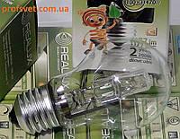 Лампа накаливания галогенная 70 вт 220в Е27