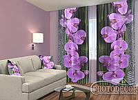 """ФотоШторы """"Орхидеи на черном"""" 2,5м*2,0м (2 половинки по 1,0м), тесьма"""