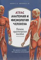 Атлас: анатомия и физиология человека. Полное практическое пособие. Г. Л. Билич, Е. Ю. Зигалова