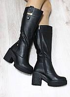Зимние натуральные кожаные сапоги с молнией по всей длине на удобном каблук черного цвета