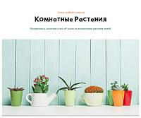 Уход за комнатными растениями зимой
