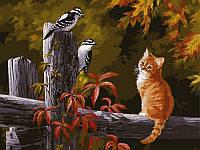 Картины по номерам на холсте 40 × 50 см. Котенок и птички на заборе худ. Клейтон, Персис