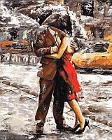 Картины по номерам 40×50 см. Летний дождь