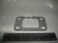 245-1008016 Прокладка коллектора выпускного МТЗ Д 245 под ТКР (БЦМ, Беларусь)