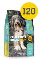 I20 Nutram Ideal 13,6кг+2,72кг-корм для собак с проблемами кожи,шерсти и пищеварения на основе ягненка