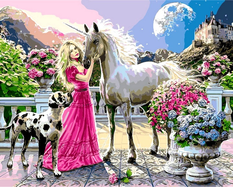 Картины по номерам 40×50 см. Девичьи мечты
