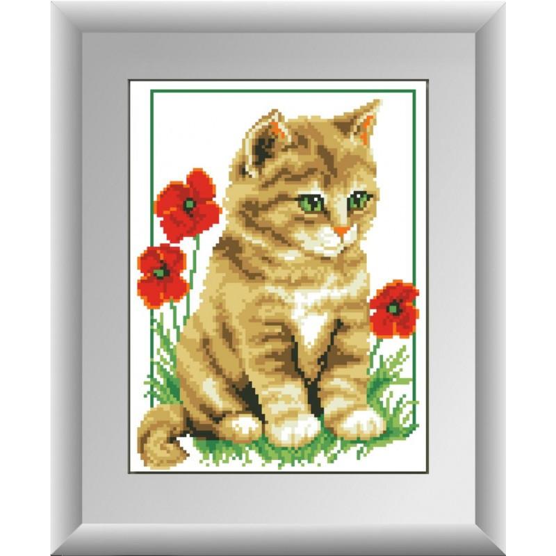 """Набор для рисования камнями """"Котенок в маках"""""""
