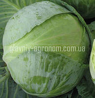 Семена капуста Коронет Ф1