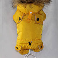 Комбинезон для животных Добаз, Dobaz Lozana желтый