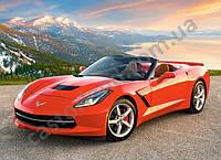 Пазлы машина Chevrolet Corvette, количество элементов 300 Castorland В-030057