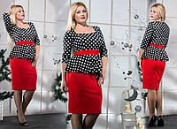 Женское платье Баска горох (48-58) 8100