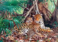 Пазлы Ягуары в джунглях, 3000 элементов Castorland C-300280