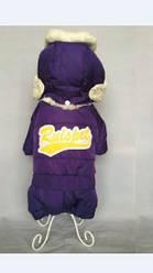 Комбинезон для животных Добаз, Dobaz Chamonix фиолет