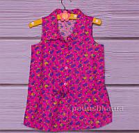 Блузка для девочки Gloria Jeans 66914 Р 128