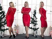 Женское красное гипюровое платье  (46-60) 8084.1