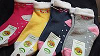 Махровые носки для девочки, р-р 5-6 лет, 1 шт 14 грн, упаковка (12 шт) 168 грн