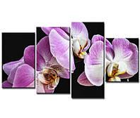 """Модульная картина """"Орхидея фиолетовая"""" 4 модуля"""