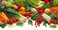 Семена овощей  Викол Прайс-листы Голландские