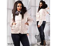 Короткая зимняя куртка большого размера (р.48-52)