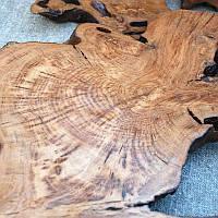 Спилы декоративные дуб лак