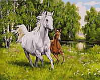 Картины по номерам 40×50 см. На воле Художник Самарская Елена