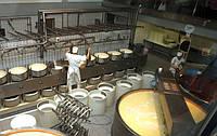 Мини цех по производству сыра