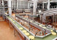 Завод по изготовлению сыра