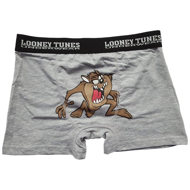 Боксеры Looney Tunes
