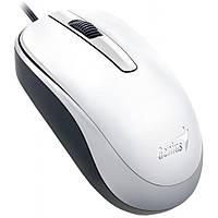 Мышка Genius DX-120 USB White (31010105102), фото 1