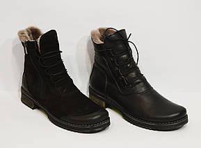 Женские кожаные зимние ботинки Phany 220, фото 3
