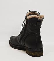 Женские кожаные ботинки Phany 220, фото 3