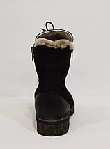 Женские нубуковые ботинки Phany 220, фото 2