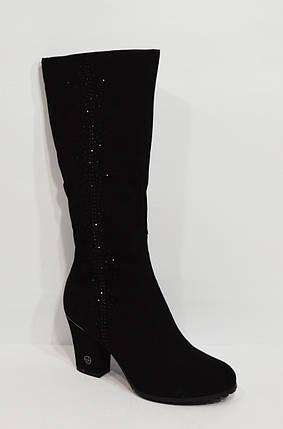 Женские черные сапоги Veritas 1569, фото 2