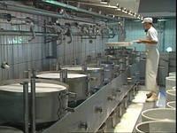 Линия производства плавленного сыра