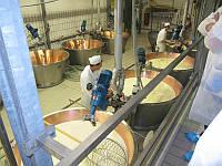 Мини сыроварня твердых сыров