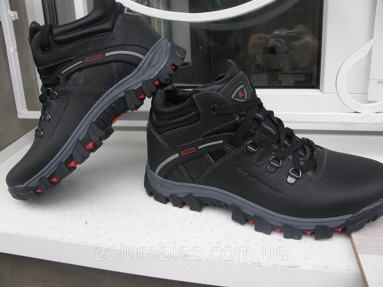 2306ce6ef Зимние спорт ботинки Ecco: продажа, цена в Днепропетровской области ...