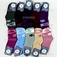 Женские махровые носки Korona B2026. В упаковке 12 пар