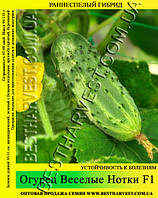 Семена огурца Веселые Нотки F1 0,5кг
