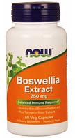 Босвеллия, Now Foods, Boswellia Extract, (250mg), 60 vcaps