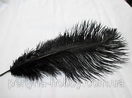 Перо страуса 25-30 исм чорне