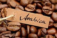 Кофе свежеобжаренный в зернах ES DC